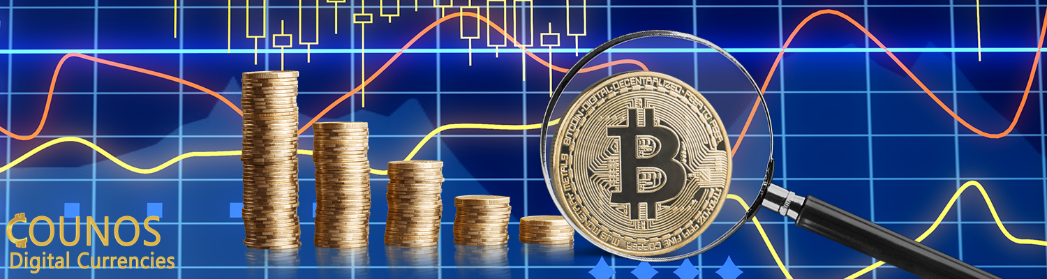 cryptocurrency price changes
